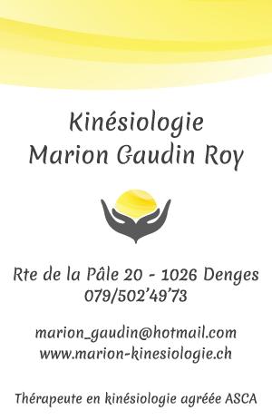 carte de visite marion kinesiologie